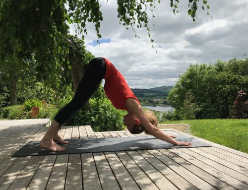 Pose of the week: why  downward facing dog is the ultimate superpose